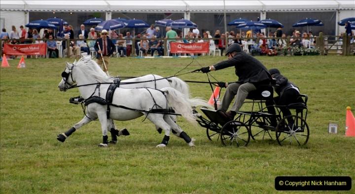 2019-09-08 Dorset County Show @ Dorchester. (403)