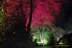 2019-12 20 Kingston Lacy (NT) Wimborne, Dorset Christmas Lights. (100) 100