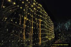 2019-12 20 Kingston Lacy (NT) Wimborne, Dorset Christmas Lights. (105) 105