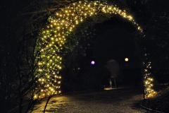 2019-12 20 Kingston Lacy (NT) Wimborne, Dorset Christmas Lights. (106) 106