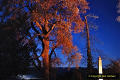2019-12 20 Kingston Lacy (NT) Wimborne, Dorset Christmas Lights. (64) 064