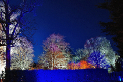 2019-12 20 Kingston Lacy (NT) Wimborne, Dorset Christmas Lights. (67) 067