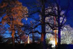 2019-12 20 Kingston Lacy (NT) Wimborne, Dorset Christmas Lights. (68) 068