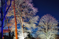 2019-12 20 Kingston Lacy (NT) Wimborne, Dorset Christmas Lights. (75) 075