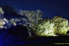 2019-12 20 Kingston Lacy (NT) Wimborne, Dorset Christmas Lights. (76) 076