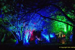 2019-12 20 Kingston Lacy (NT) Wimborne, Dorset Christmas Lights. (85) 085