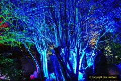 2019-12 20 Kingston Lacy (NT) Wimborne, Dorset Christmas Lights. (87) 087