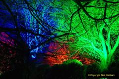 2019-12 20 Kingston Lacy (NT) Wimborne, Dorset Christmas Lights. (89) 089