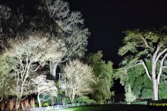 2019-12 20 Kingston Lacy (NT) Wimborne, Dorset Christmas Lights. (90) 090