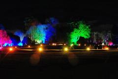 2019-12 20 Kingston Lacy (NT) Wimborne, Dorset Christmas Lights. (94) 094