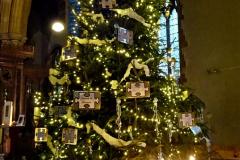 2019-12-21 St. Aldhelms Church Christmas Trees. (27) 027