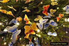 2019-12-21 St. Aldhelms Church Christmas Trees. (42) 042