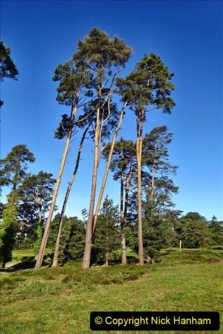 2020-05-04 Covid 19 walk Parkstone Golf Club Poole, Dorset.  (39) 039
