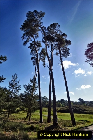 2020-05-04 Covid 19 walk Parkstone Golf Club Poole, Dorset.  (64) 064