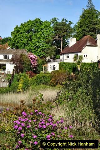 2020-05-04 Covid 19 walk Parkstone Golf Club Poole, Dorset.  (71) 071