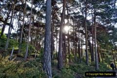 2020-05-04 Covid 19 walk Parkstone Golf Club Poole, Dorset.  (18) 018