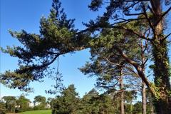 2020-05-04 Covid 19 walk Parkstone Golf Club Poole, Dorset.  (41) 041