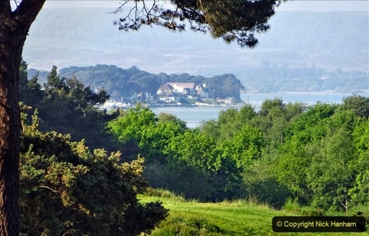 2020 May 07 Covid 19 Walk around Parkstone Golf Club third time (22) 022