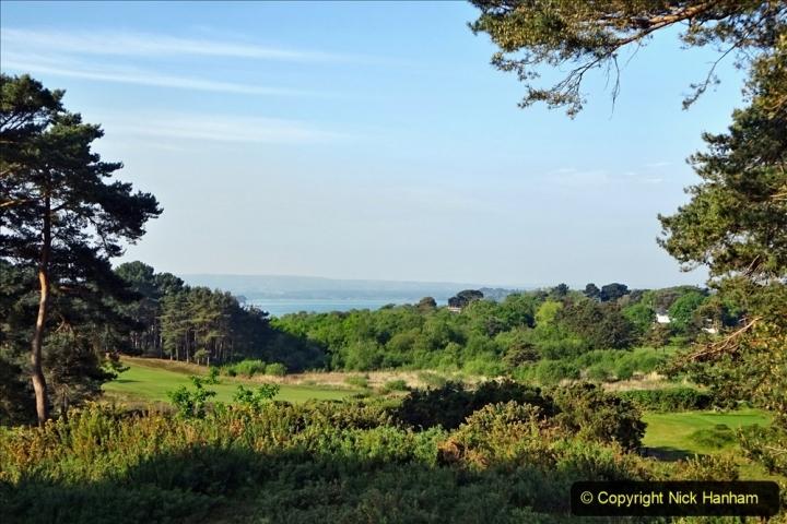 2020 May 07 Covid 19 Walk around Parkstone Golf Club third time (23) 023