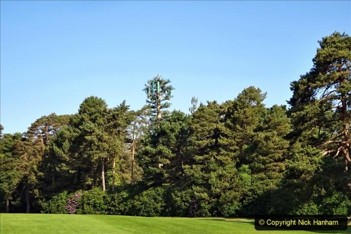 2020 May 07 Covid 19 Walk around Parkstone Golf Club third time (28) 028