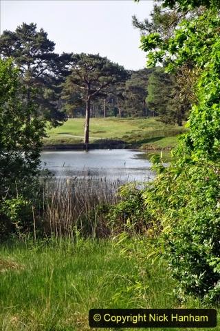 2020 May 07 Covid 19 Walk around Parkstone Golf Club third time (40) 040