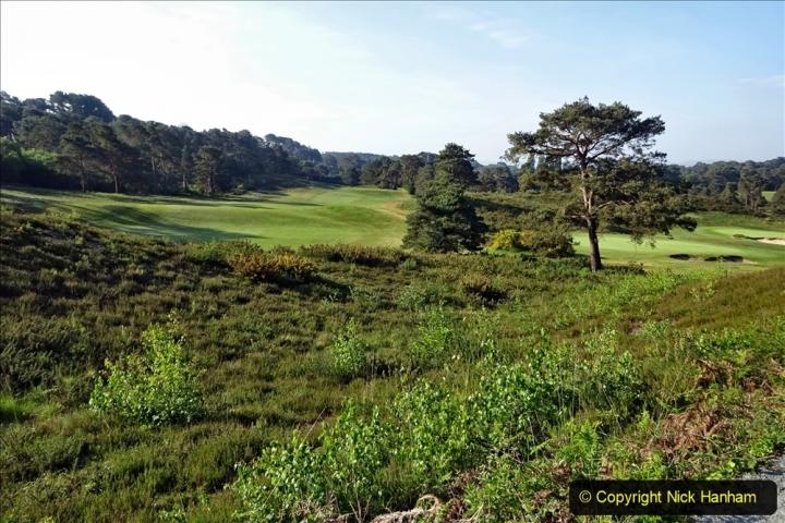 2020 May 07 Covid 19 Walk around Parkstone Golf Club third time (5) 005