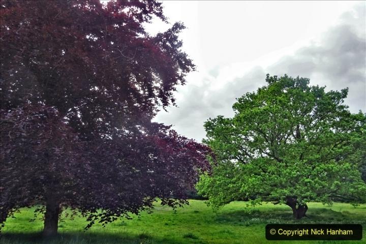 2020 05 10 Covid 19 walk Lilliput Evening Hill Luscombe Vale (17) 017