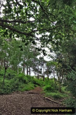 2020 05 10 Covid 19 walk Lilliput Evening Hill Luscombe Vale (4) 004