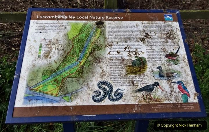 2020 05 10 Covid 19 walk Lilliput Evening Hill Luscombe Vale (40) 040