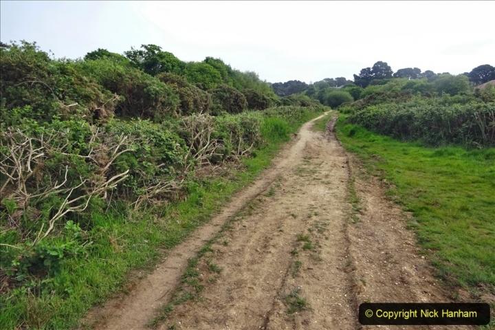2020 05 10 Covid 19 walk Lilliput Evening Hill Luscombe Vale (41) 041