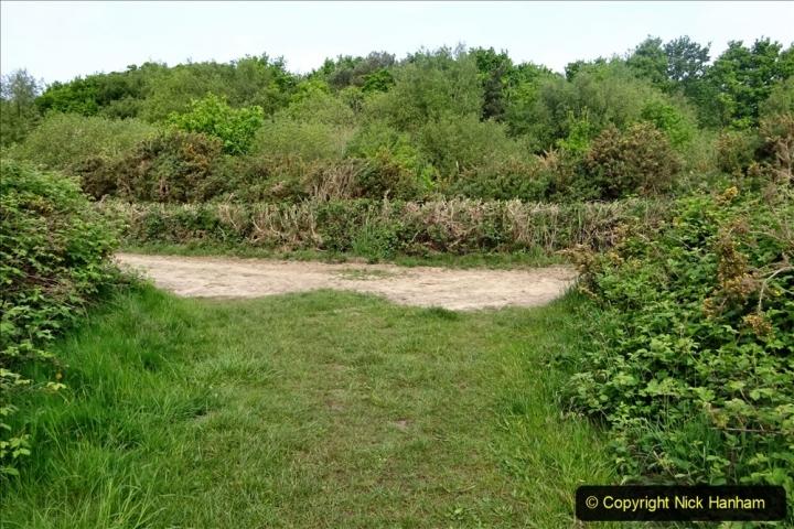 2020 05 10 Covid 19 walk Lilliput Evening Hill Luscombe Vale (43) 043