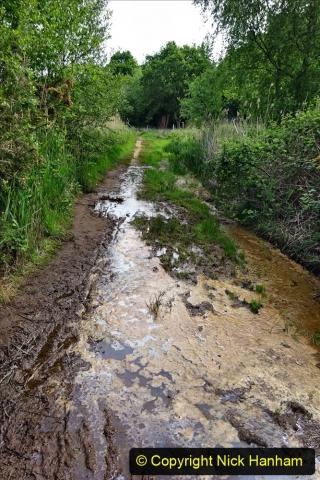 2020 05 10 Covid 19 walk Lilliput Evening Hill Luscombe Vale (44) 044