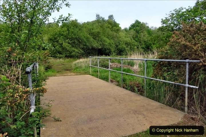 2020 05 10 Covid 19 walk Lilliput Evening Hill Luscombe Vale (45) 045
