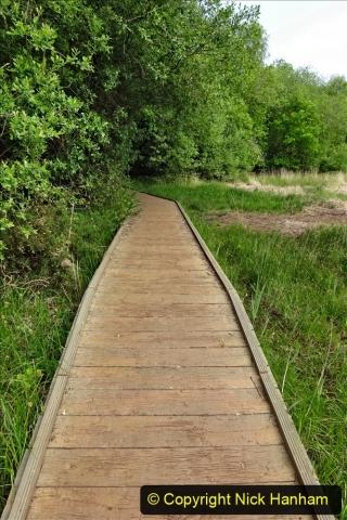 2020 05 10 Covid 19 walk Lilliput Evening Hill Luscombe Vale (48) 048
