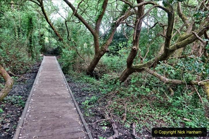 2020 05 10 Covid 19 walk Lilliput Evening Hill Luscombe Vale (50) 050