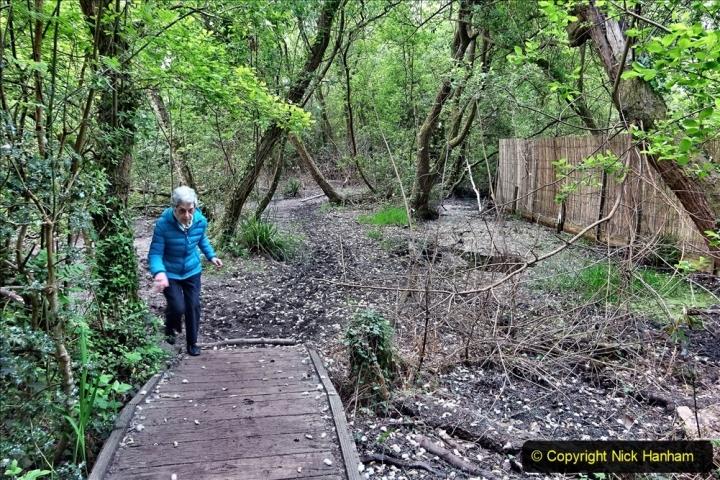 2020 05 10 Covid 19 walk Lilliput Evening Hill Luscombe Vale (51) 051