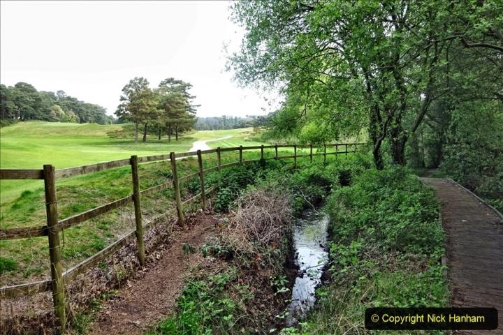 2020 05 10 Covid 19 walk Lilliput Evening Hill Luscombe Vale (52) 052