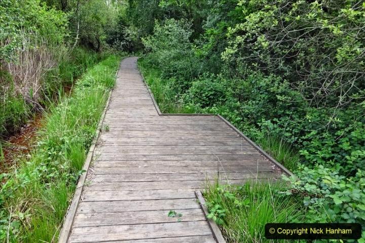 2020 05 10 Covid 19 walk Lilliput Evening Hill Luscombe Vale (53) 053
