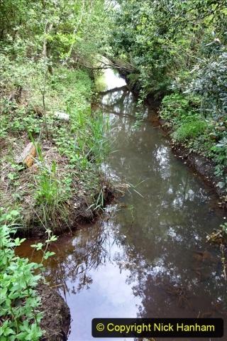 2020 05 10 Covid 19 walk Lilliput Evening Hill Luscombe Vale (54) 054