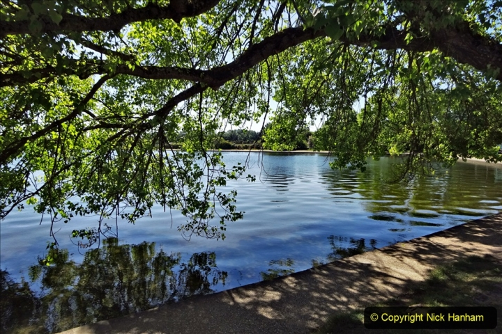 2020-05-18 Covid 19 Walks Circumnavigation of Poole Park, Poole, Dorset. (103) 103