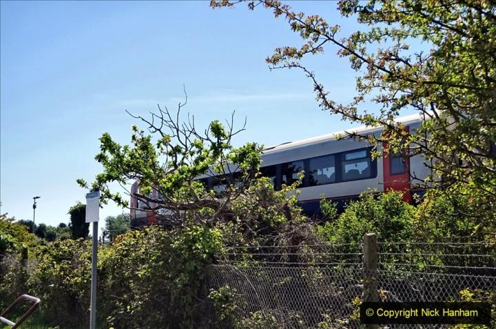 2020-05-18 Covid 19 Walks Circumnavigation of Poole Park, Poole, Dorset. (112) 112