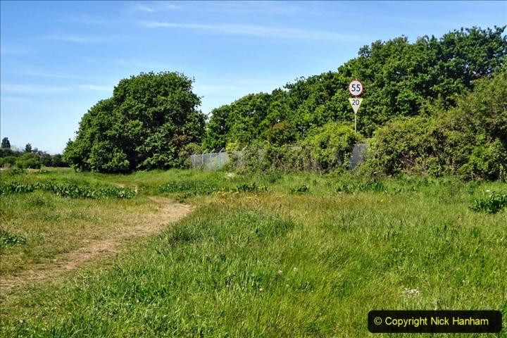 2020-05-18 Covid 19 Walks Circumnavigation of Poole Park, Poole, Dorset. (128) 128