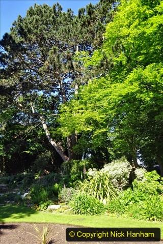 2020-05-18 Covid 19 Walks Circumnavigation of Poole Park, Poole, Dorset. (32) 032
