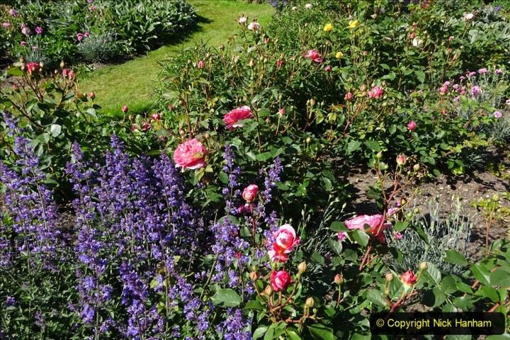 2020-05-18 Covid 19 Walks Circumnavigation of Poole Park, Poole, Dorset. (54) 054