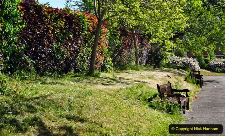 2020-05-18 Covid 19 Walks Circumnavigation of Poole Park, Poole, Dorset. (59) 059