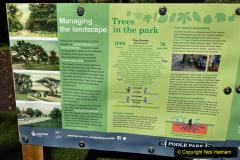 2020-05-18 Covid 19 Walks Circumnavigation of Poole Park, Poole, Dorset. (31) 031