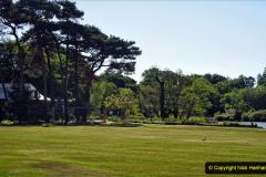 2020-05-18 Covid 19 Walks Circumnavigation of Poole Park, Poole, Dorset. (42) 042