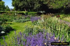 2020-05-18 Covid 19 Walks Circumnavigation of Poole Park, Poole, Dorset. (58) 058
