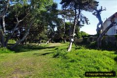 2020-05-18 Covid 19 Walks Circumnavigation of Poole Park, Poole, Dorset. (9) 009