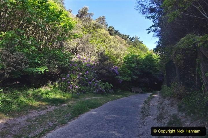 2020-05-20 Covid 19 Walk to the beach at Branksome Chine, Poole, Dorset. (31) 031